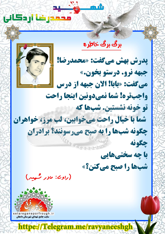 خاطرات شهید محمدرضا اردکانی