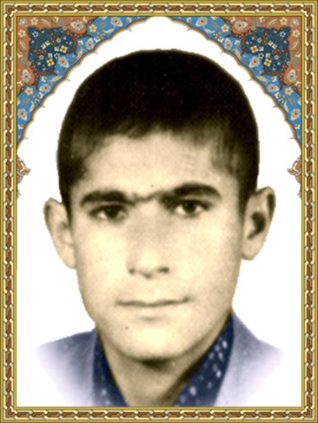 امی محمود