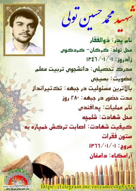 شناسنامه شهید محمدحسین تولی