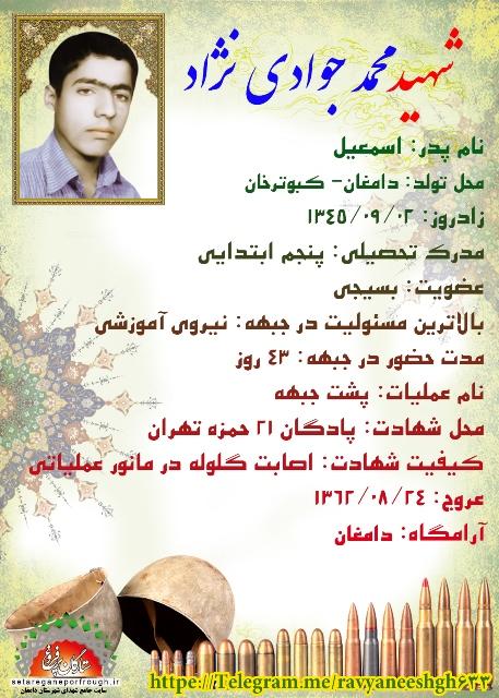 شناسنامه شهید محمد جوادی نژاد
