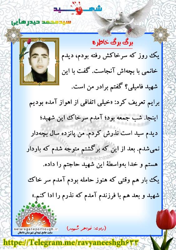 خاطرات شهید سید محمد حیدرهایی