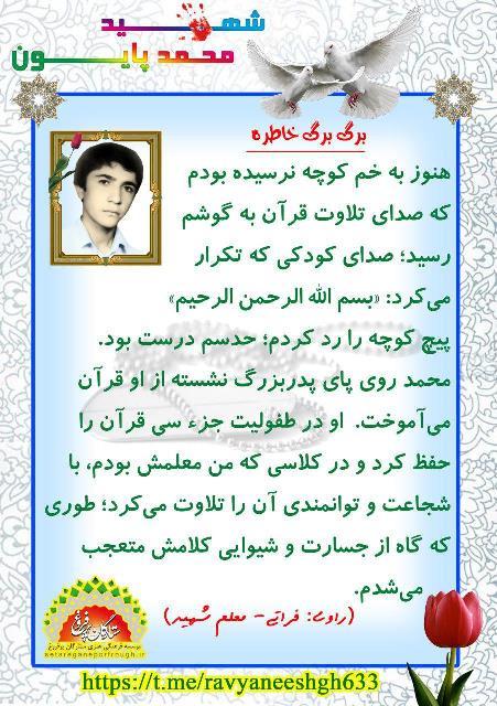 خاطرات شهید محمد پایون