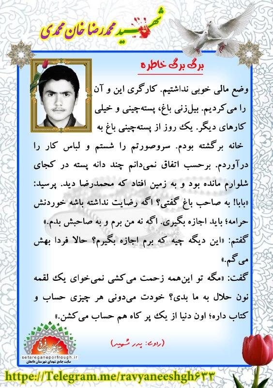 خاطرات شهید محمدرضا خان محمدی
