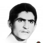 شهید محمد ربیع زاده