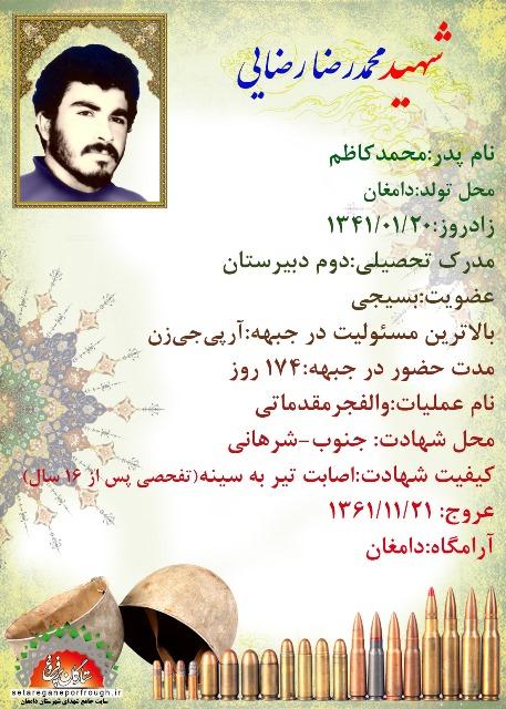 شناسنامه شهید محمدرضا رضایی