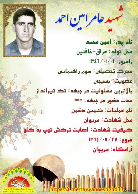 شناسنامه شهید عامر امین احمد