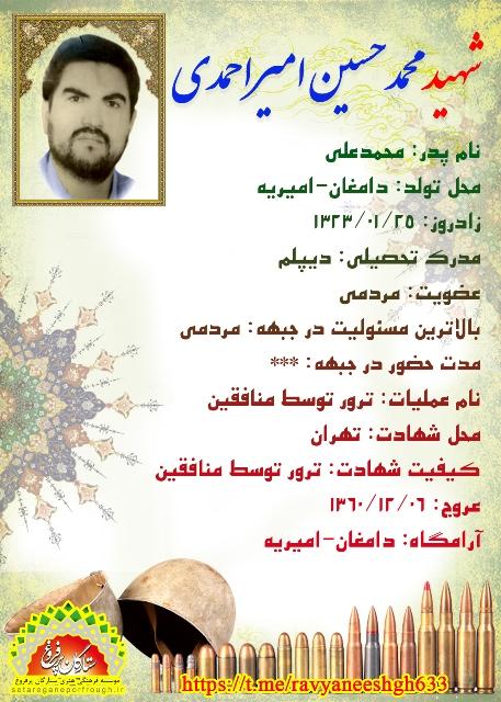 شناسنامه شهید محمدحسین امیر احمدی