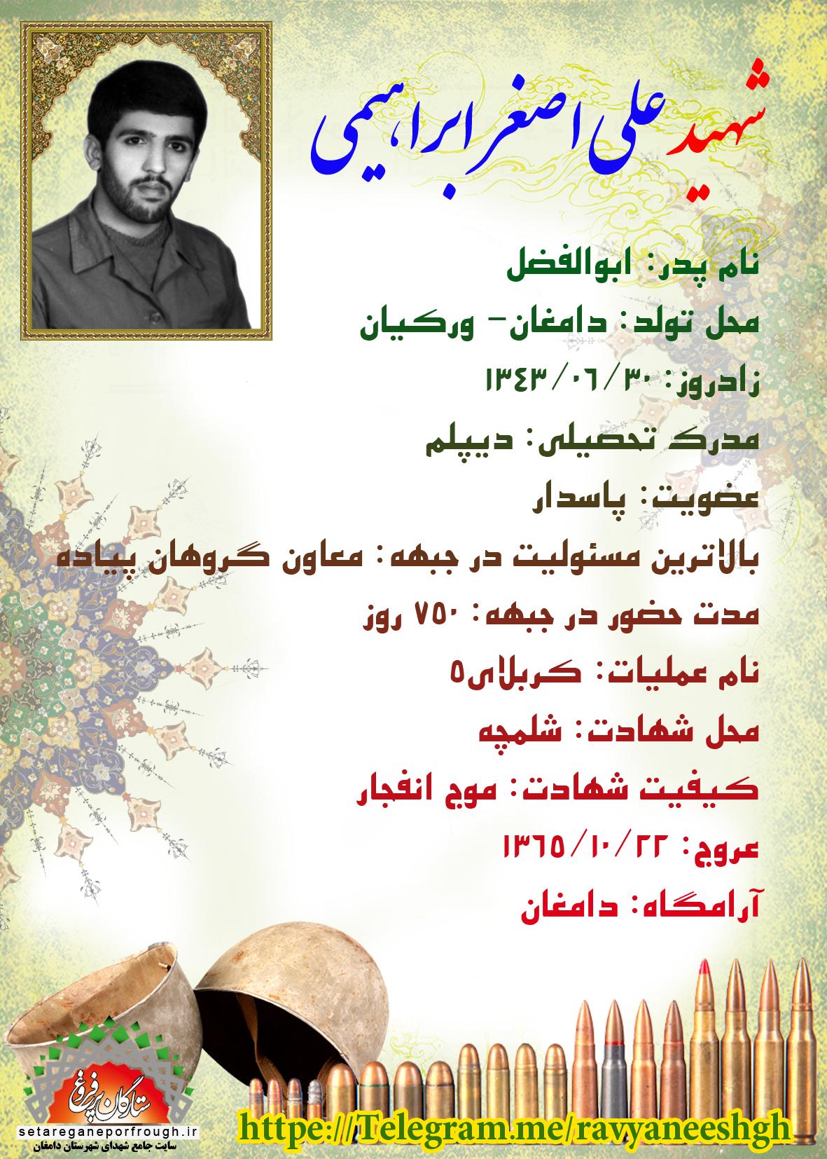 شناسنامه شهید علیاصغر ابراهیمیورکیانی