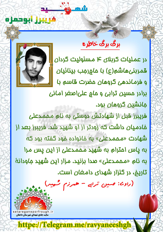 خاطرات شهید فریبرز ابوحمزه