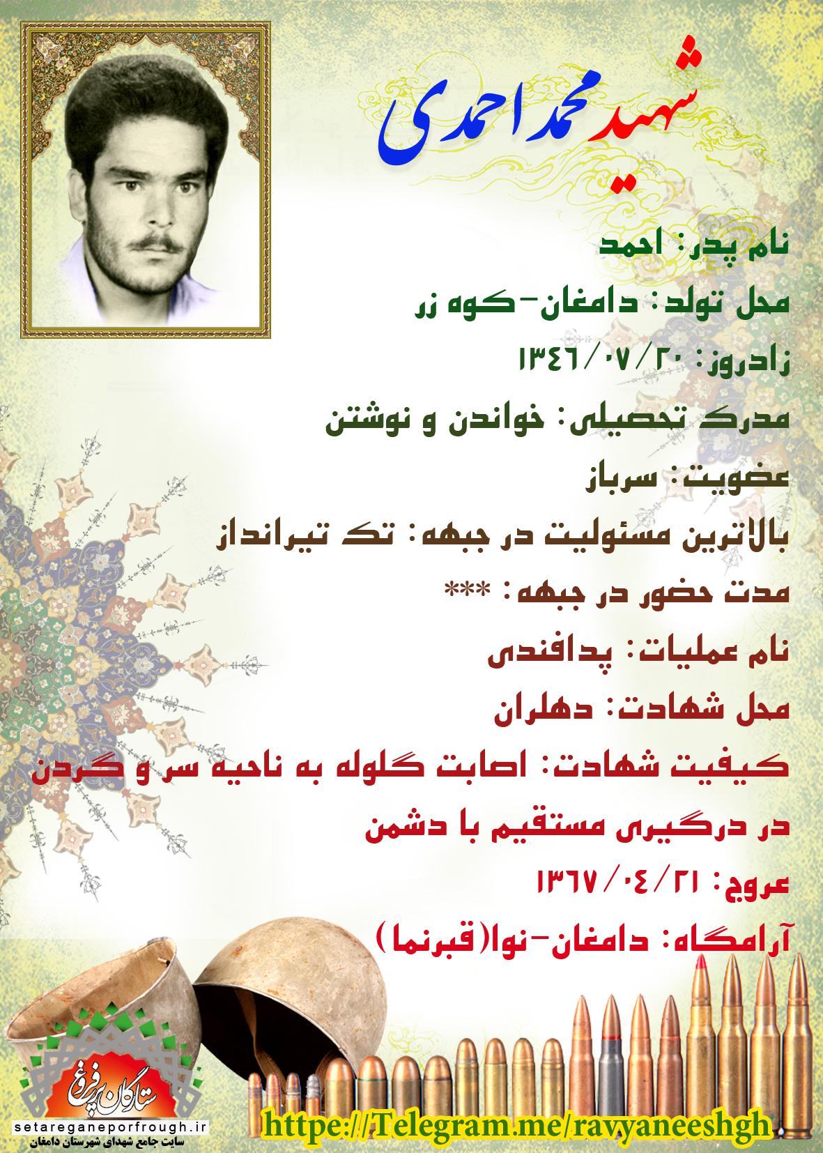 شناسنامه شهید محمد احمدی