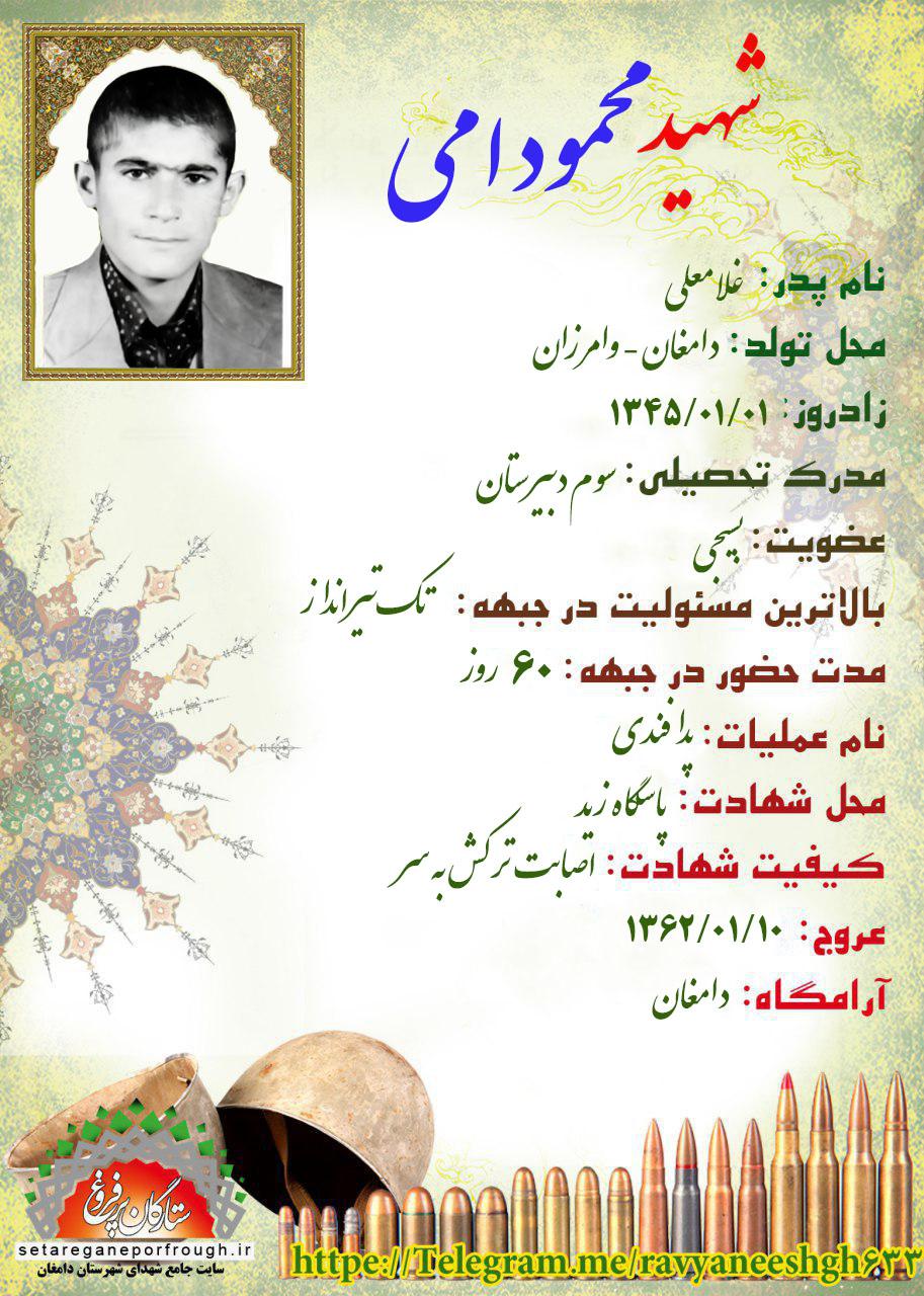 شناسنامه شهید محمود امی