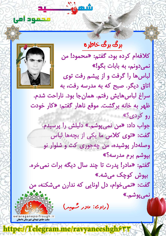 خاطرات شهید محمود امی