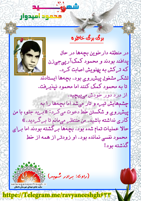 خاطرات شهید محمود امیدوار