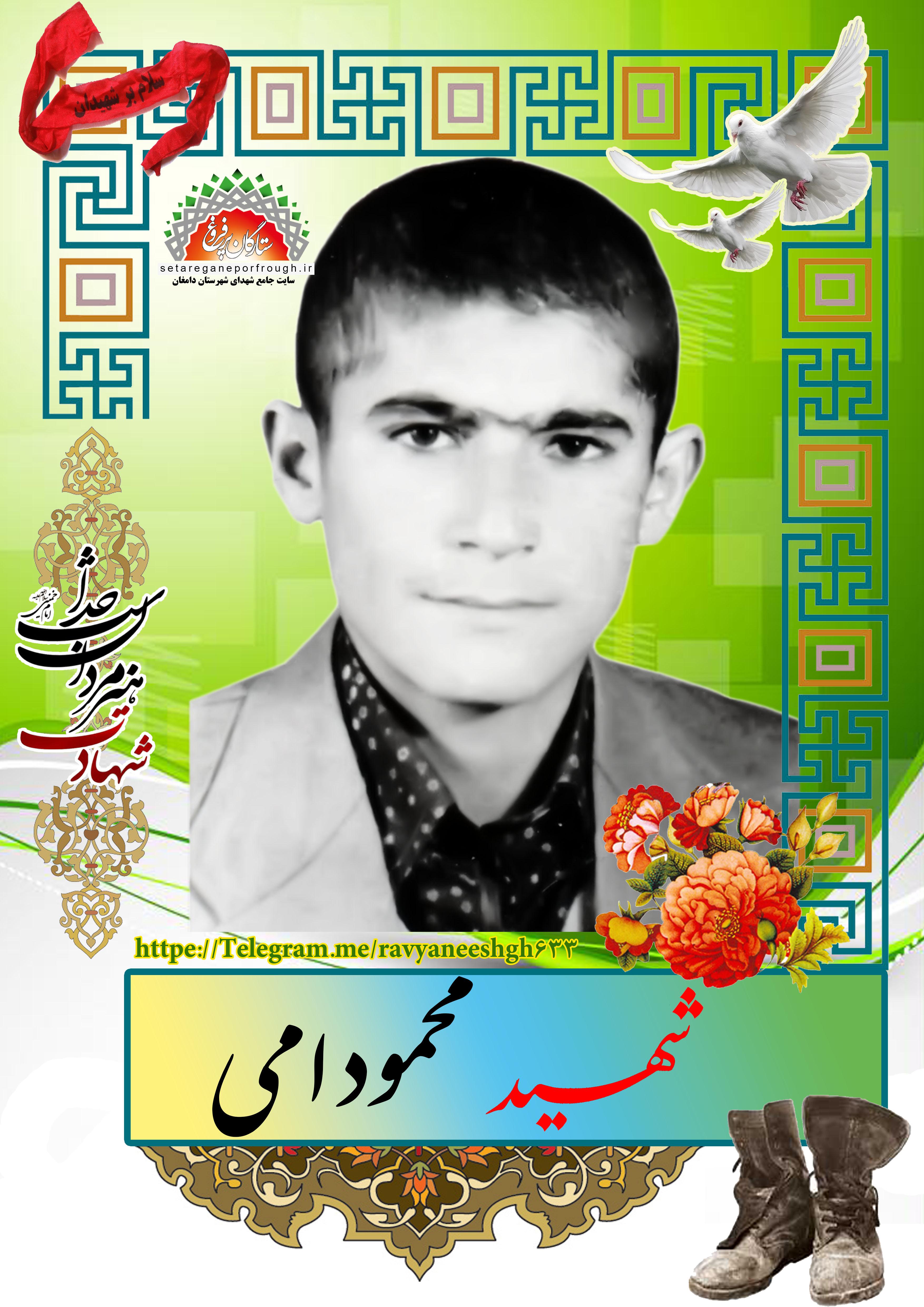 شهید محمود امی
