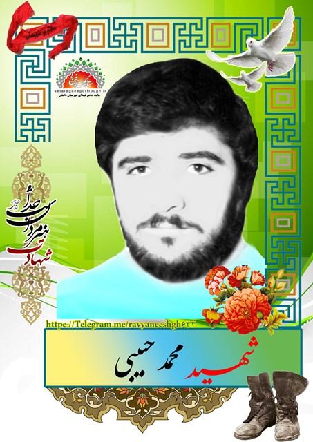 شهید محمد حبیبی