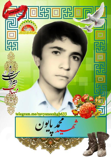 شهید محمد پایون