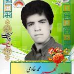 شهید محمد خادمی