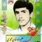 شهید علیرضا خان محمدی