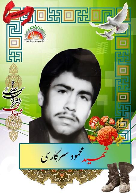 شهید محمود سرکاری