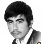 شهید علی صادقی