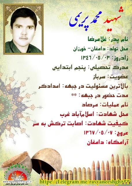 شناسنامه محمد پریمی