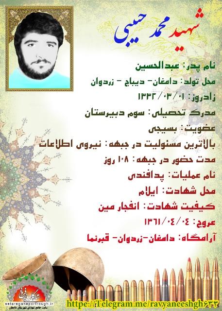 شناسنامه شهید محمد حبیبی