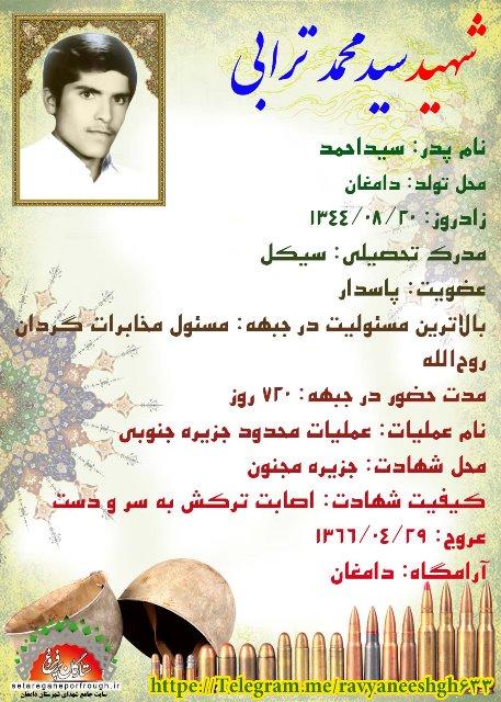 شناسنامه شهید سید محمد ترابی