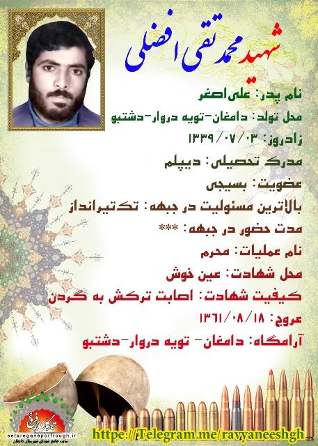 شناسنامه شهید محمدتقی افضلی