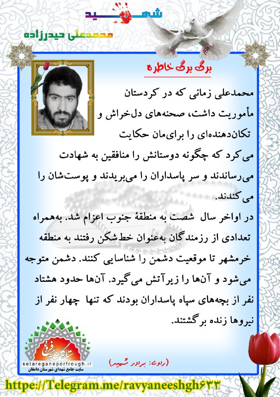 خاطرات شهید محمدعلی حیدرزاده