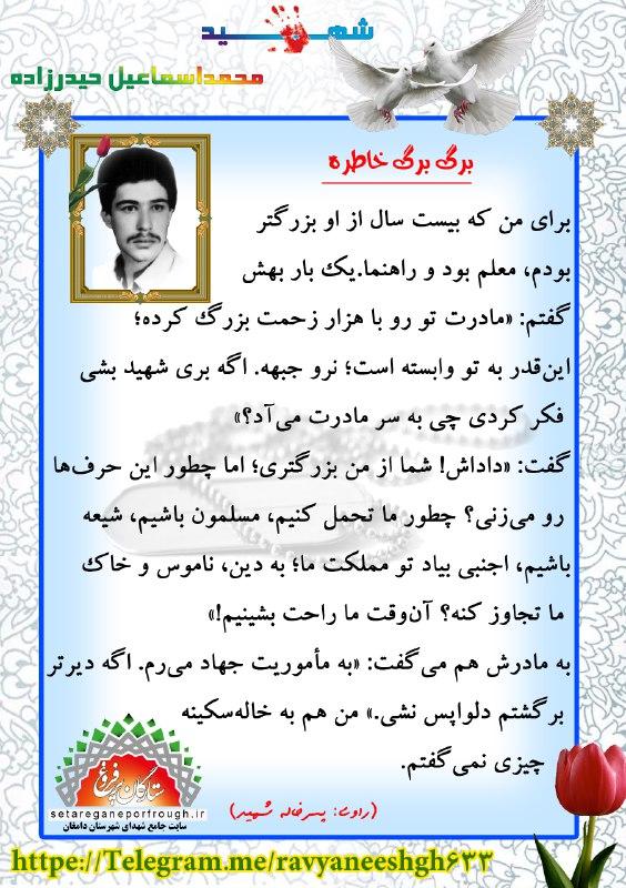 خاطرات شهید محمداسماعیل حیدرزاده
