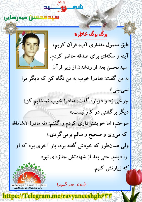 خاطرات شهید سید محسن حیدرهایی
