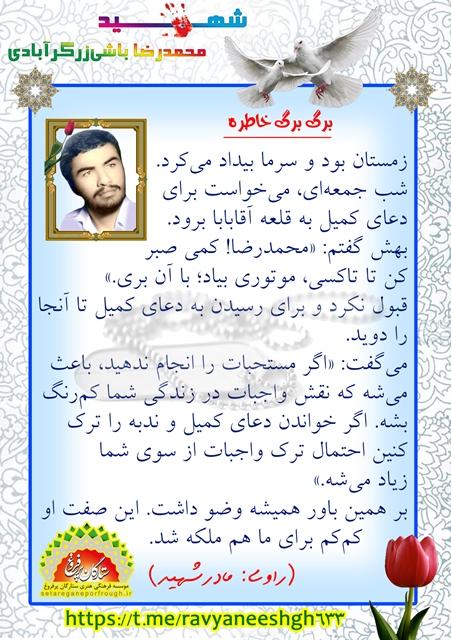 خاطرات شهید محمدرضا باشی زرگر آبادی
