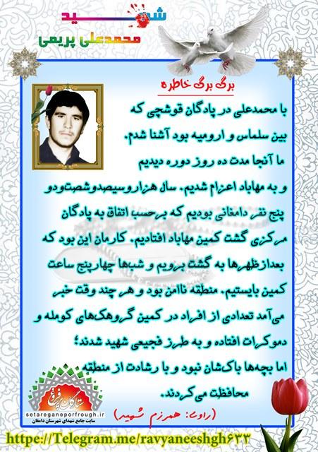 خاطرات شهید محمدعلی پریمی