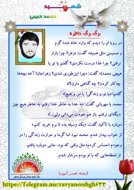خاطرات شهید محمد حبیبی