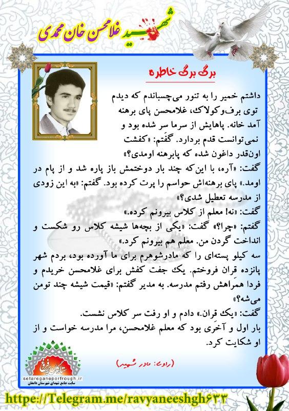 خاطرات شهید غلامحسن خان محمدی