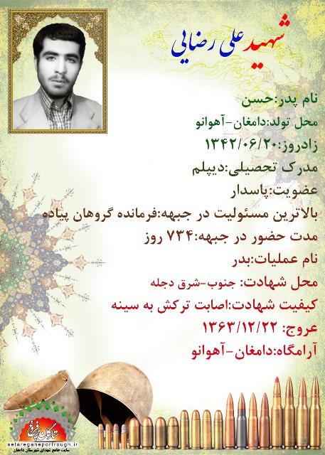 شناسنامه شهید علی رضایی