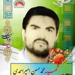 شهید محمد حسین امیر احمدی