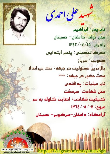 شناسنامه شهید علی احمدی
